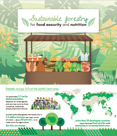 PÓSTER 1 - Sustainable forestry